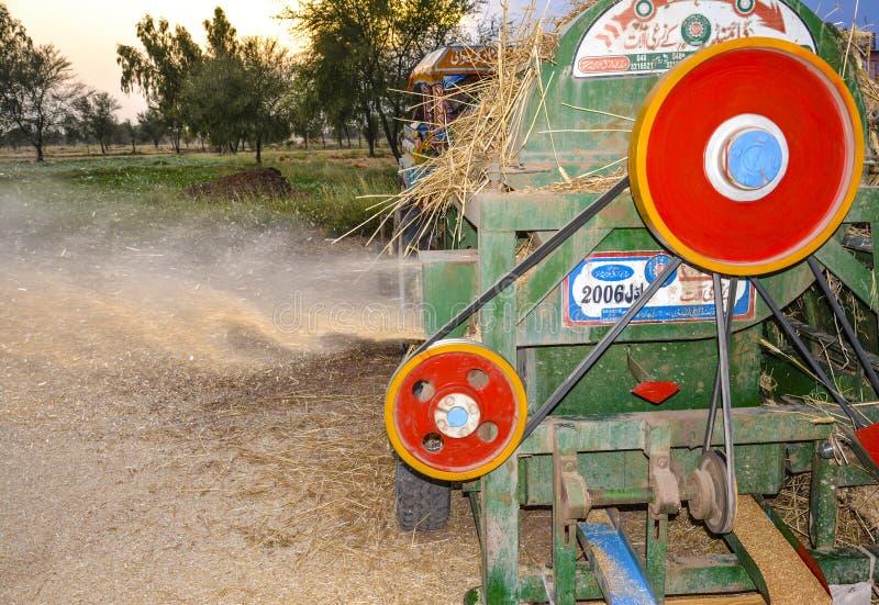 Молотить пшеницы в деревне стоковые изображения rf