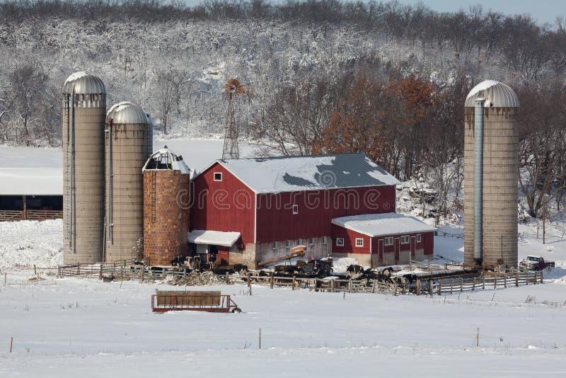 Молочная ферма в свежем снеге стоковые фото