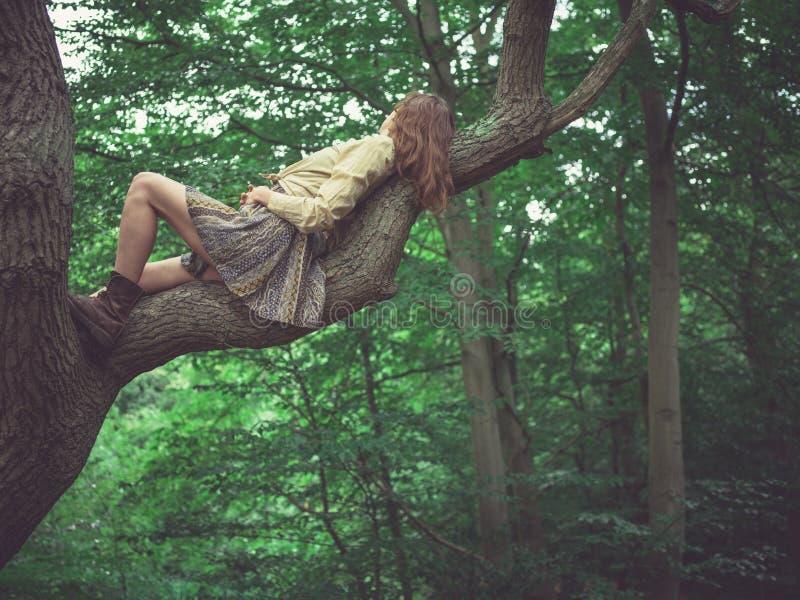 Молодая женщина лежа в дереве стоковое фото rf