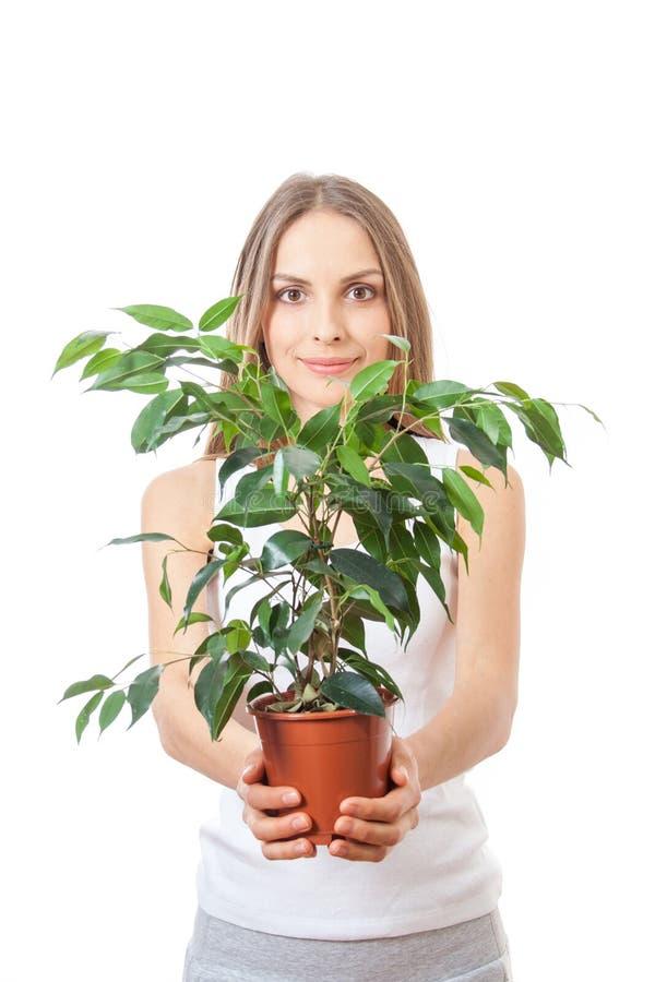 Молодая женщина держа комнатное растение, isolaterd на белизне стоковое изображение rf