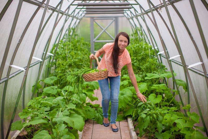 Download Молодая женщина держа корзину растительности и лука Стоковое Фото - изображение насчитывающей свеже, сад: 40586136