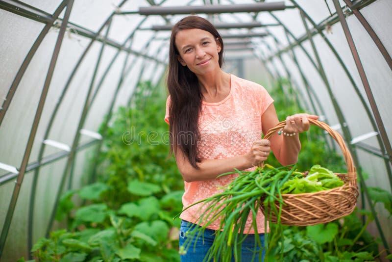 Download Молодая женщина держа корзину растительности и лука Стоковое Изображение - изображение насчитывающей владения, природа: 40586297