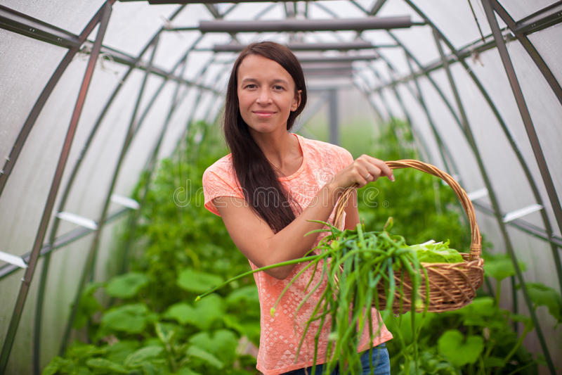 Download Молодая женщина держа корзину растительности и лука Стоковое Фото - изображение насчитывающей вполне, greenery: 40586362