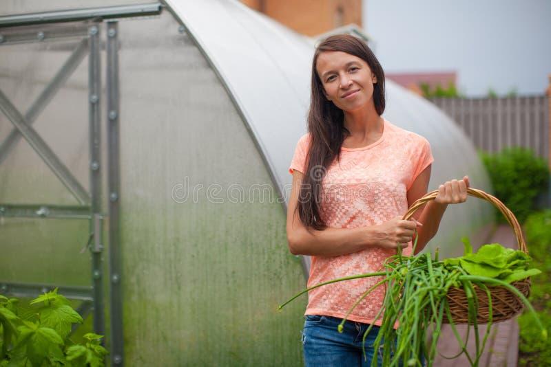 Download Молодая женщина держа корзину растительности и лука Стоковое Изображение - изображение насчитывающей девушка, листья: 40586397
