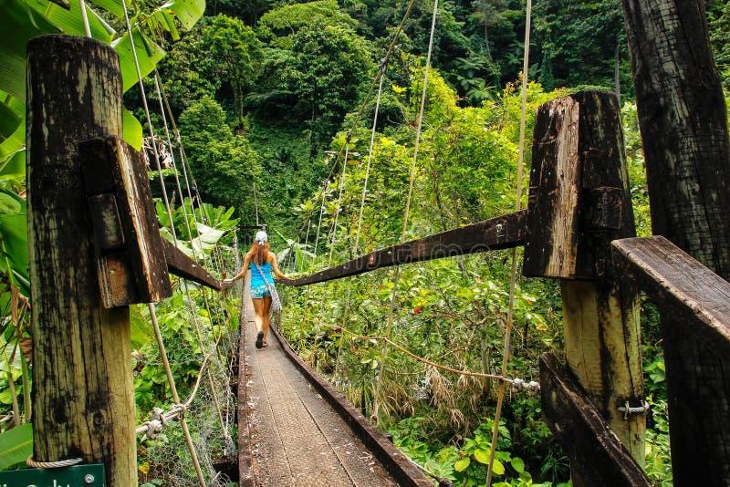 Молодая женщина идя на висячий мост над потоком Wainibau, l стоковые изображения rf