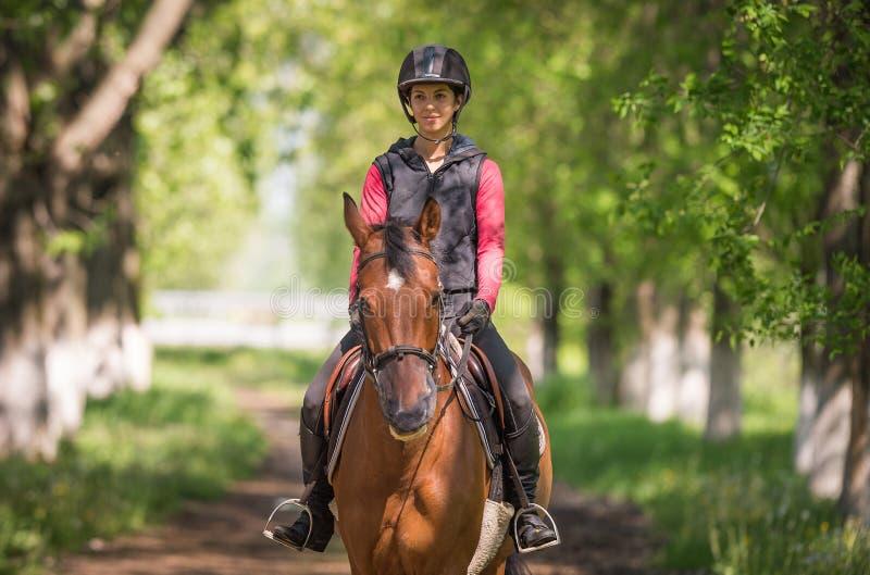 Молодая женщина на езде лошади стоковое фото rf