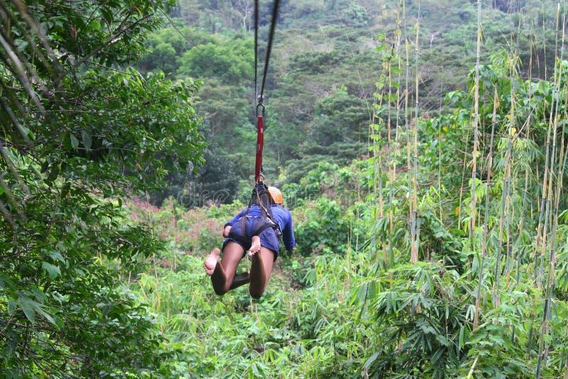Молодая женщина на zipline над джунглями стоковые изображения