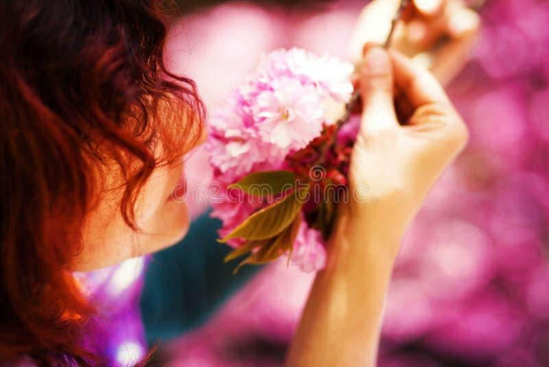 Молодая женщина пахнуть красивым цветением Сакуры, фиолетовыми цветками Волшебство весны стоковая фотография