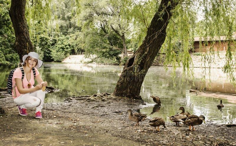 Молодая женщина подает группа в составе утка в парке города стоковое изображение rf