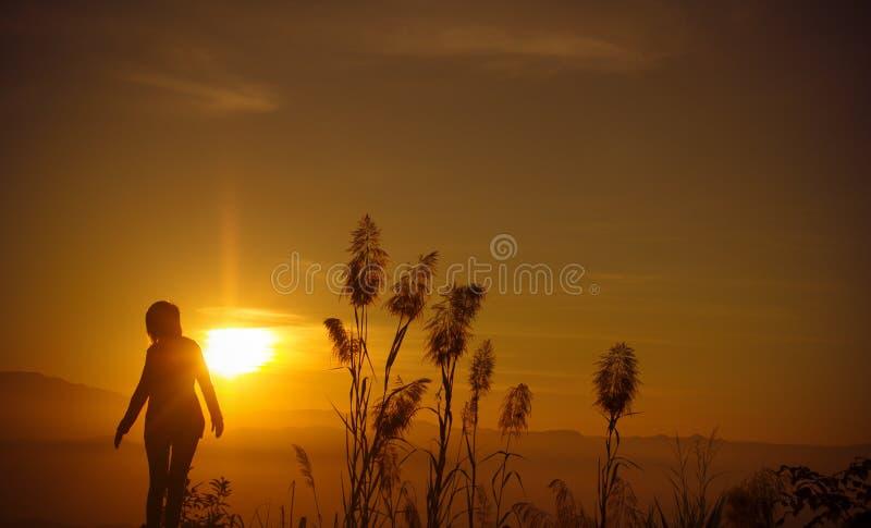 Молодая женщина силуэта захода солнца самостоятельно стоковые изображения rf