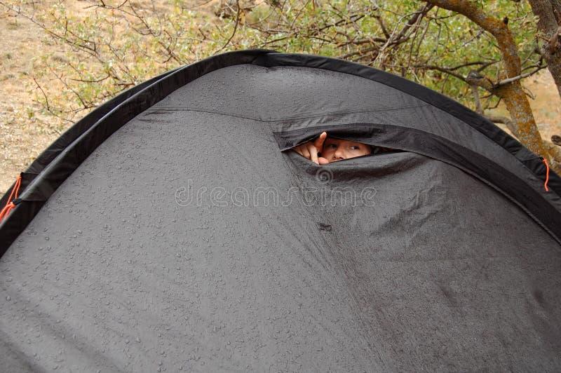 Молодая женщина смотрит из шатра во время дождя стоковое изображение rf