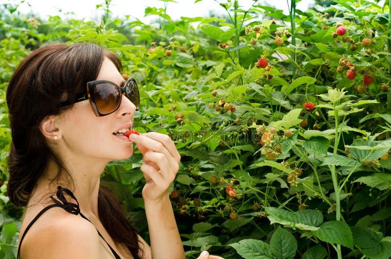Молодая женщина собирает ягоды стоковое изображение