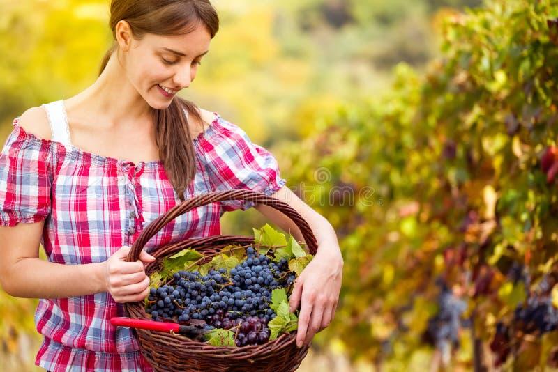 Молодая женщина с корзиной полной виноградин стоковое изображение rf