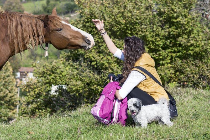 Молодая женщина штрихуя красную лошадь стоковая фотография rf