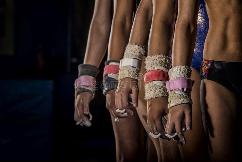 Молодая линия девушек гимнастов стоковые фотографии rf