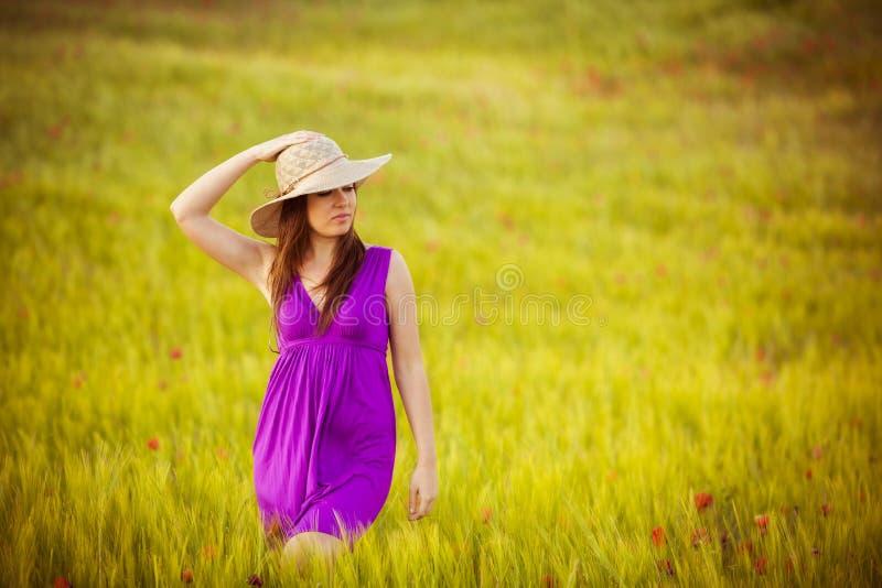 Красотка на поле стоковое фото rf