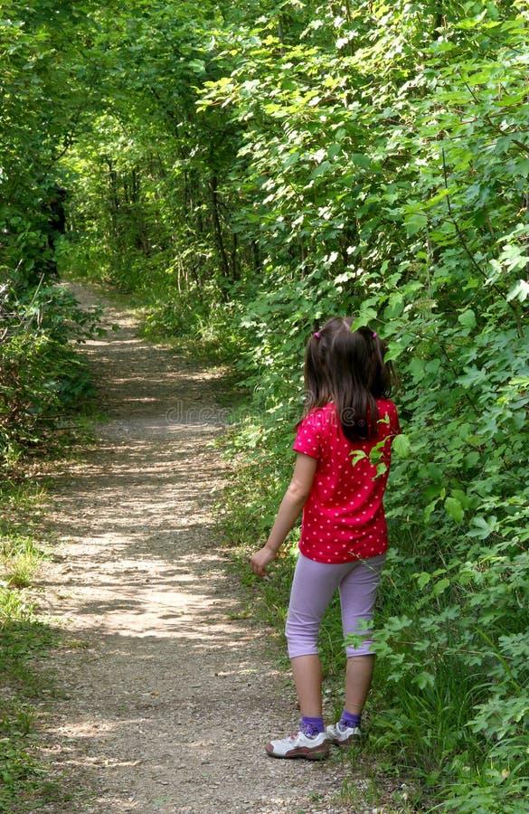 Молодая маленькая девочка потеряла в следе древесин стоковые изображения rf
