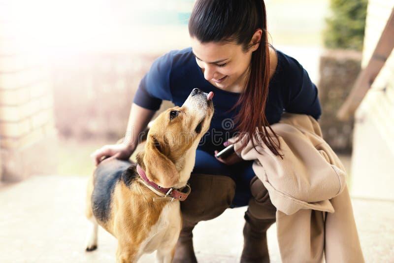 Молодая милая женщина играя с собакой бигля стоковая фотография