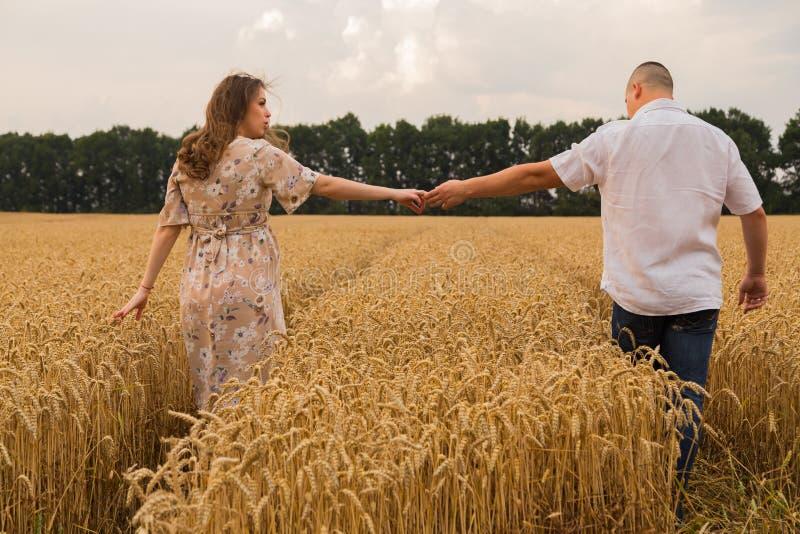 Молодая середина пар пшеничного поля стоковые изображения rf