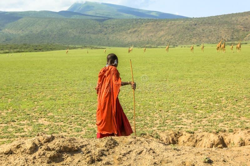 Молодое племя Masai стоковое изображение