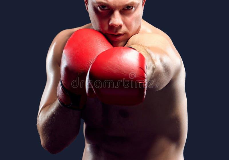 Молодой бокс боксера стоковая фотография rf