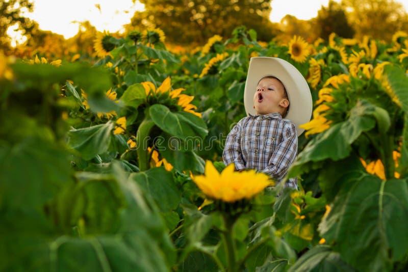 Молодой ковбой кукарекая в заплате солнцецвета стоковое фото rf