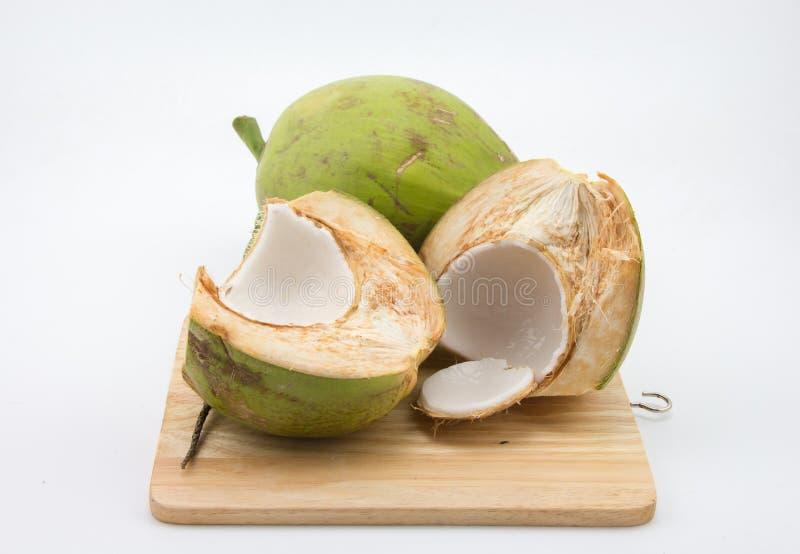 Молодой кокос стоковые изображения rf