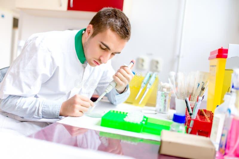 Молодой красивые ученый и химик работая в лаборатории стоковое фото rf