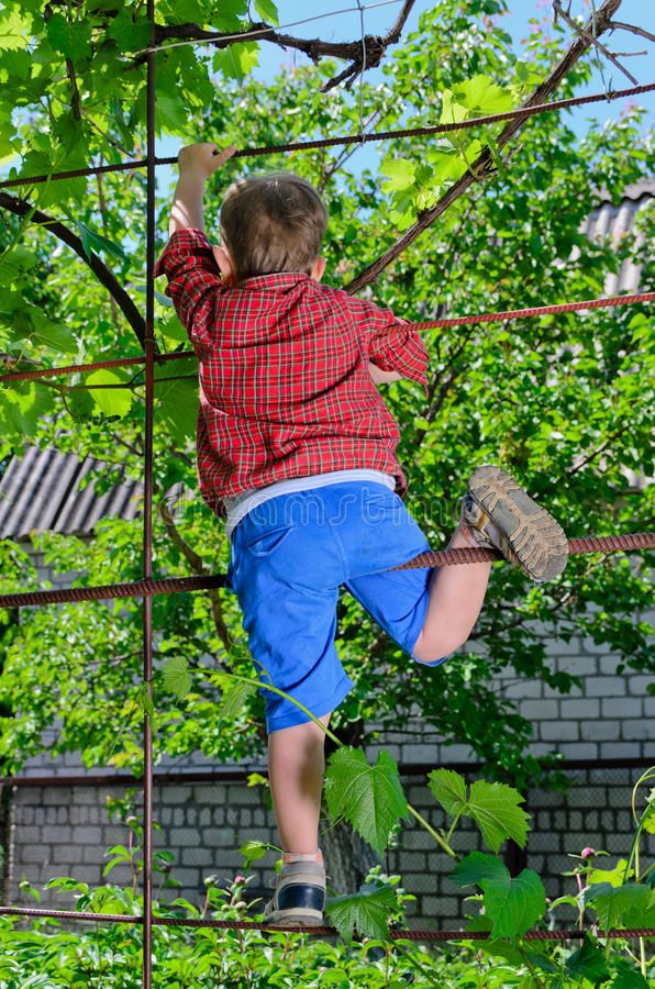 Молодой мальчик играя в саде стоковые изображения rf