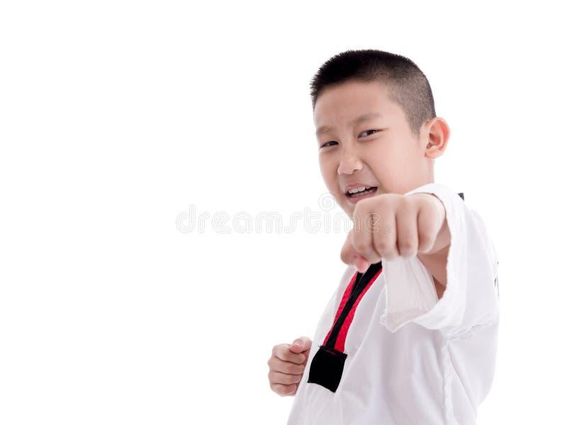 Молодой мальчик тренируя изолированное действие Тхэквондо стоковое изображение