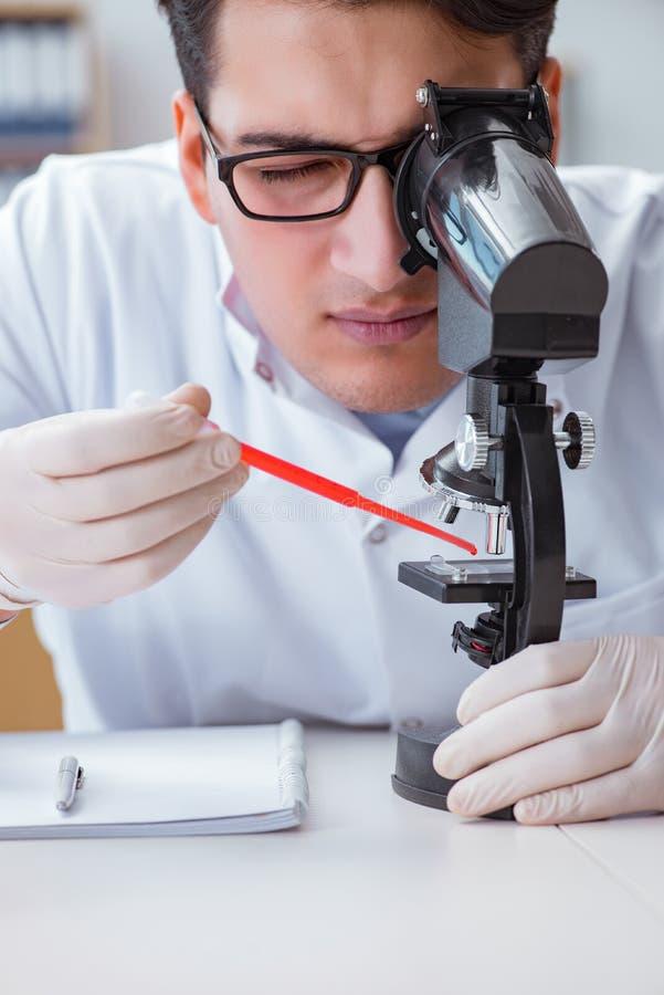 Молодой доктор делая анализ крови стоковые изображения