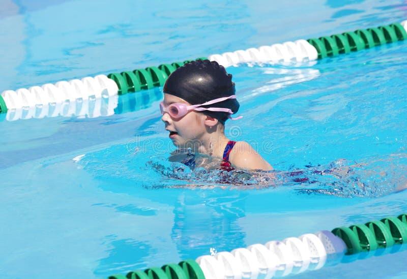Молодой пловец на соревнованиях по плаванию стоковое изображение