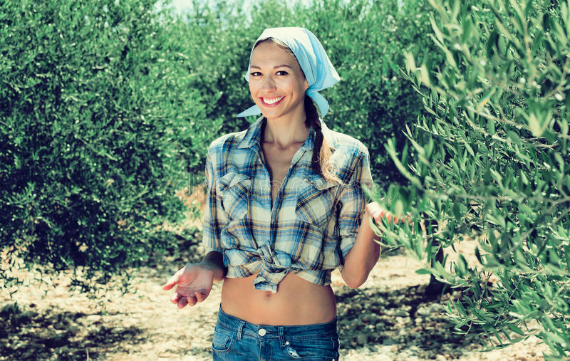 Молодой счастливый садовник женщины стоя среди оливковых дерев стоковые фото