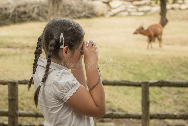 Молодой фотограф стоковое фото rf