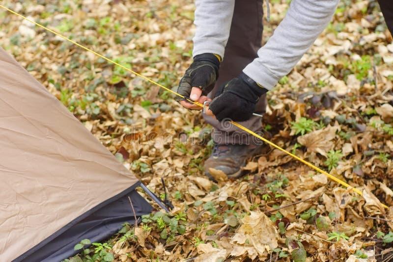 Молодой человек кладя шатер в древесины a стоковые фото