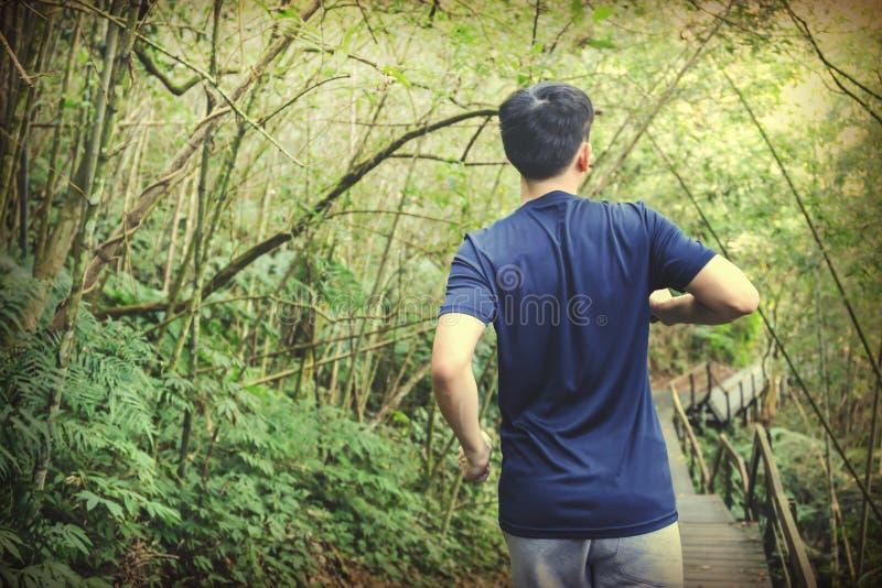 Молодой человек нагревая и идя побежать в следе леса стоковое изображение rf