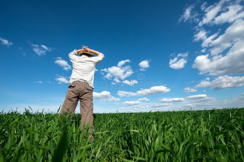 Молодой человек на зеленом поле пшеницы стоковая фотография rf