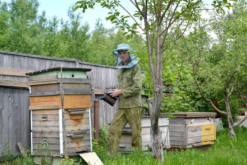 Молодой beekeeper с dymary на пасеке стоковое изображение