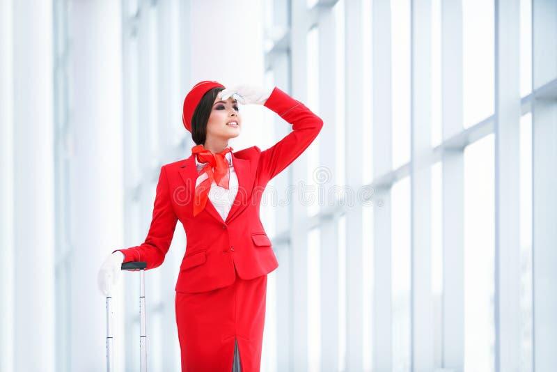 Молодой stewardess стоковые фотографии rf