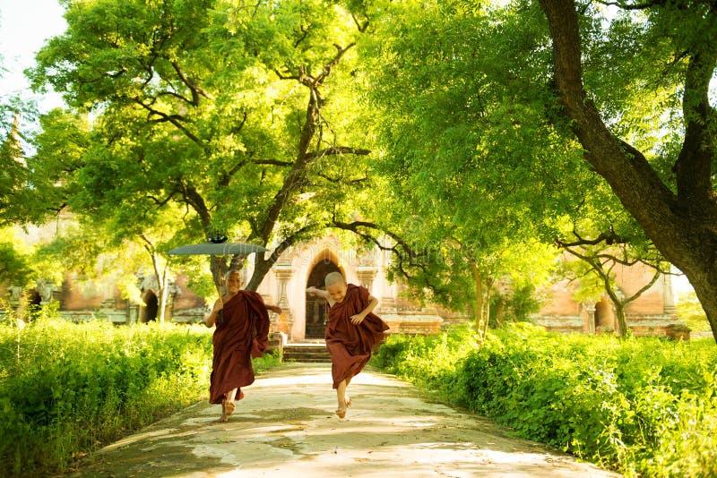 Молодые буддийские монахи послушника руководя внешний монастырь стоковая фотография rf
