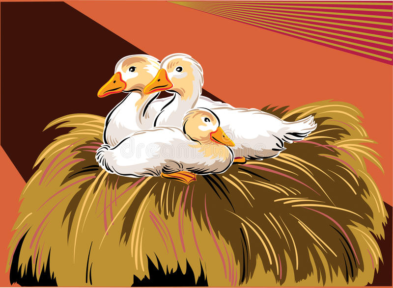 Молодые гусыни в гнезде иллюстрация вектора