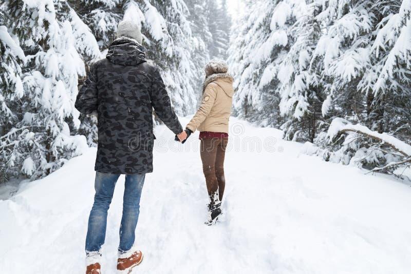 Молодые пары идя в человека и женщину леса снега внешний придерживаясь взгляда рук задний стоковое изображение