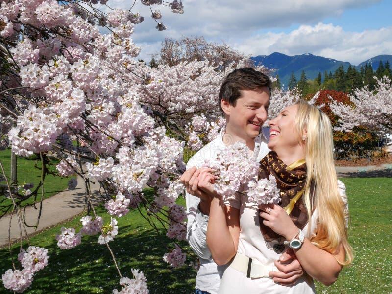 Молодые пары с вишневыми цветами весной стоковая фотография