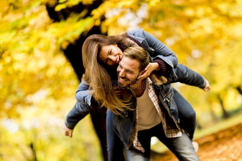 Молодые любящие пары имея потеху в парке осени стоковое фото rf