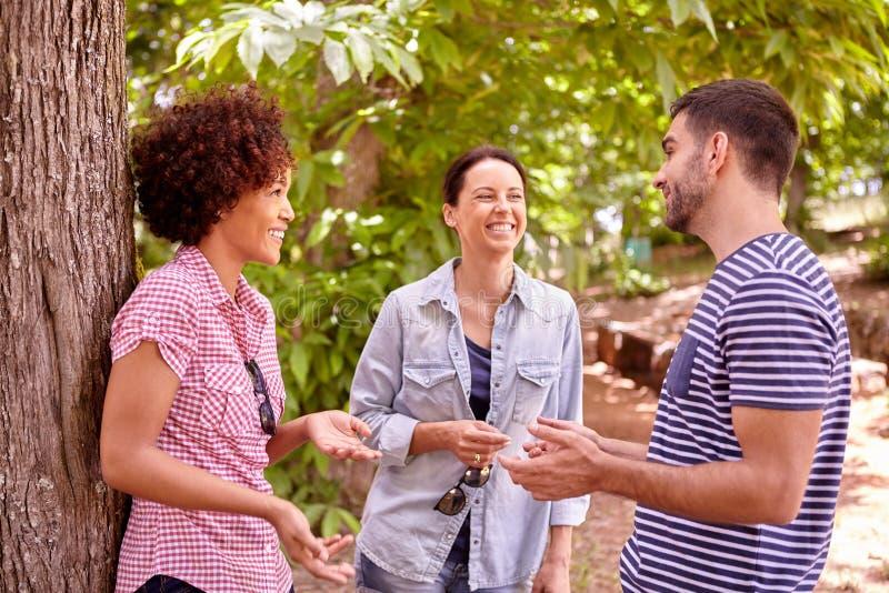 3 молодые люди в лесистой области стоковая фотография