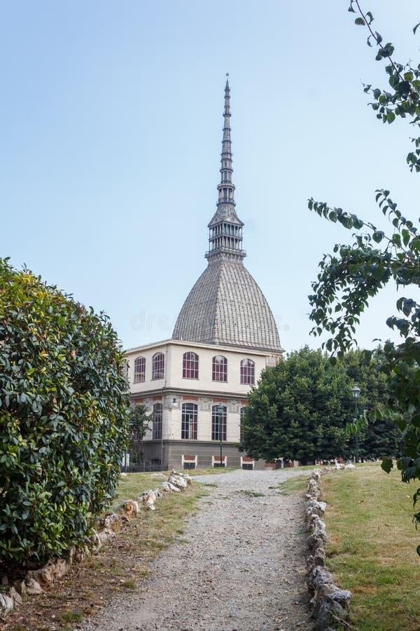 Моль Antoneliana стоковая фотография rf