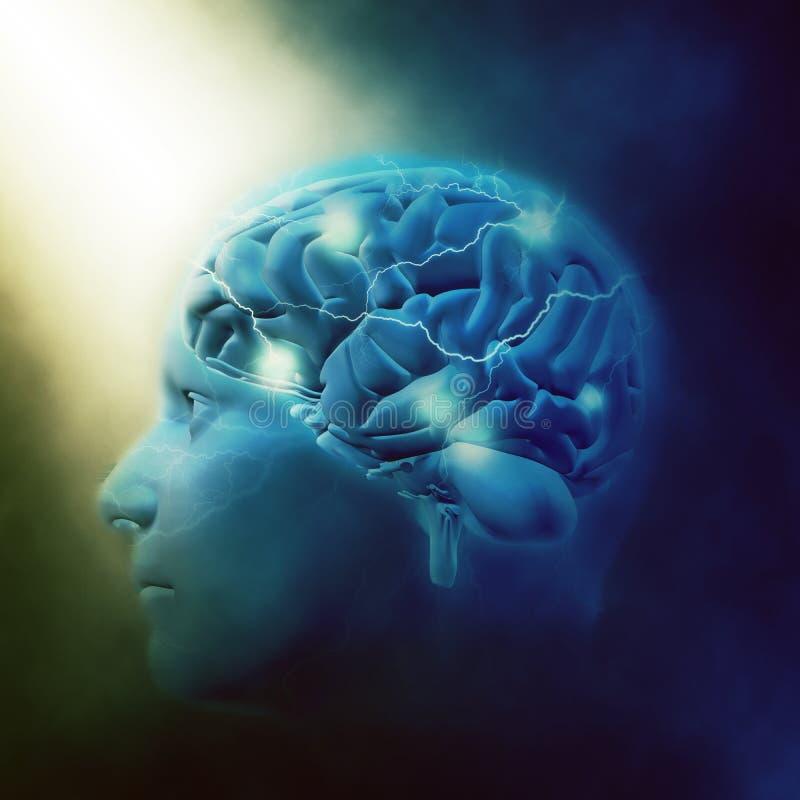 мужская голова 3D с мозгом иллюстрация штока
