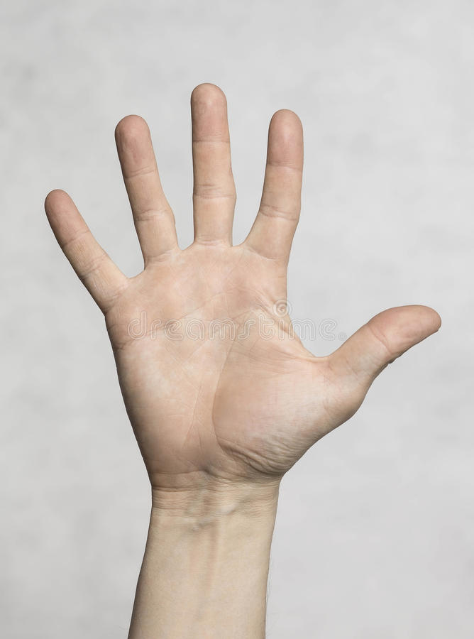 Мужская рука ладони стоковое фото