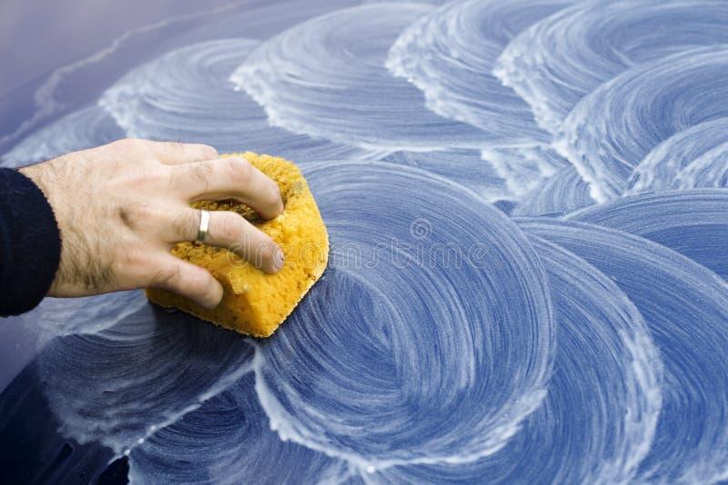 Мужская рука прикладывает полируя затир на краске автомобиля с губкой стоковое фото