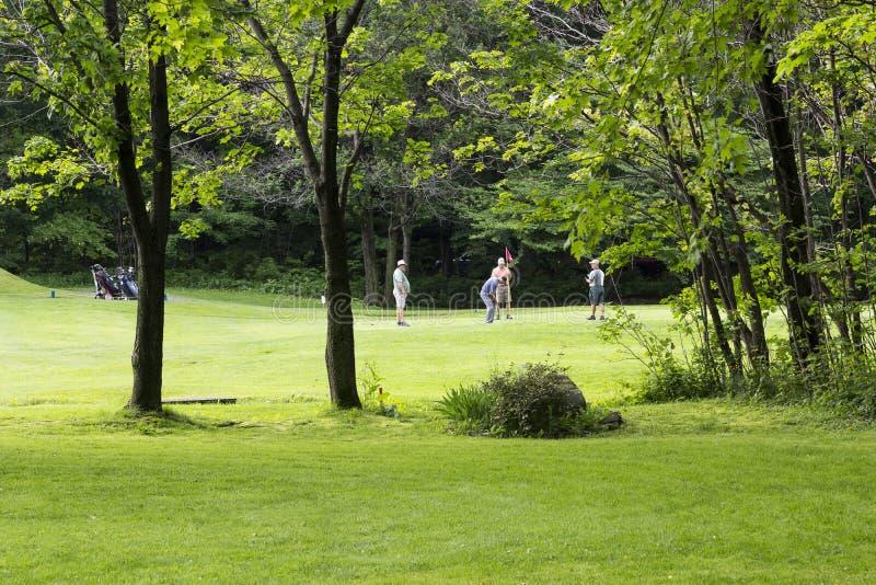 Мужская четверка на отверстии гольфа в довольно сельском самом старом североамериканском поле для гольфа стоковое изображение